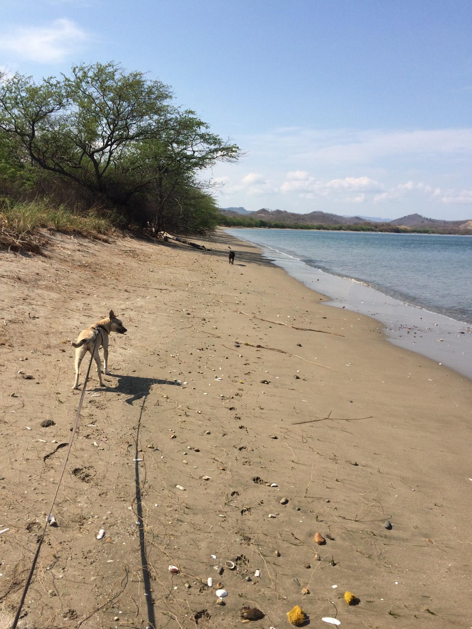 costa rica first beach.jpg