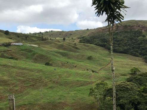 countryside shot.jpg