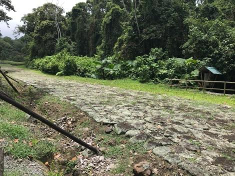 guayabo ruins.jpg