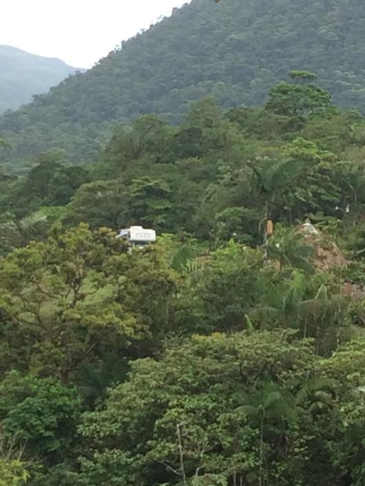 jungle camper.jpg