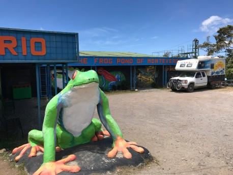monteverde frog place.jpg
