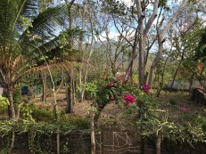ometepe view from back door