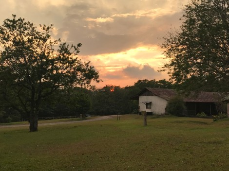 rincon viejo sunset.jpg