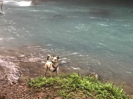 rio celeste nica.jpg