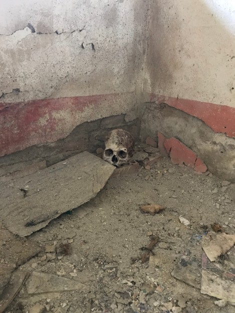 gramalote skull