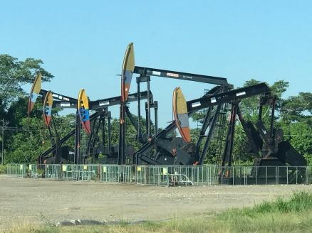 oil in parking lot