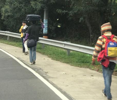 venezuelan walking