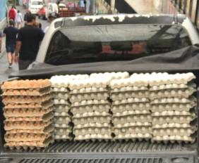 eggs in truck.jpg