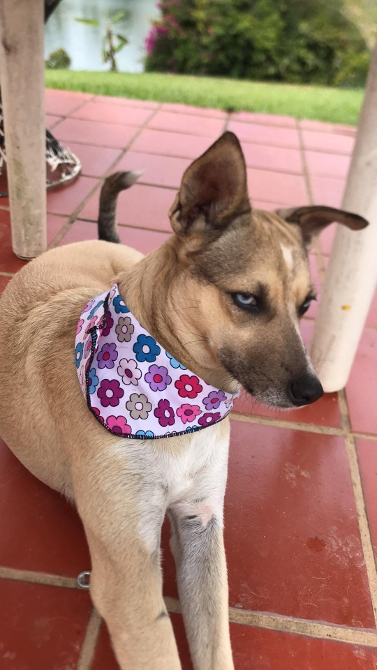 nica in new bandana