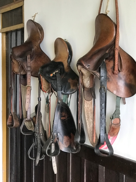 saddlery collection