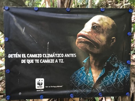 conservation poster1
