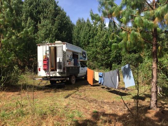 forest campsite laundry