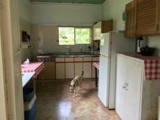 the farm kitchen